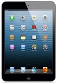 iPad Mini 120