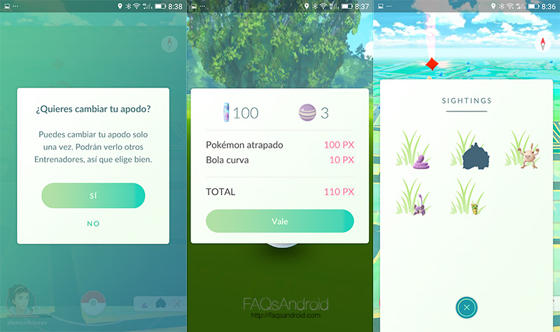 Pokemon Go: cambiar nick, corrección de problemas...
